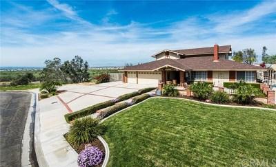 Norco Single Family Home For Sale: 2305 Canyon Ridge Circle