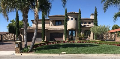 Yorba Linda Single Family Home For Sale: 18871 Sunnyview Circle