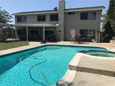 Norco Single Family Home For Sale: 2203 Del Mar Road
