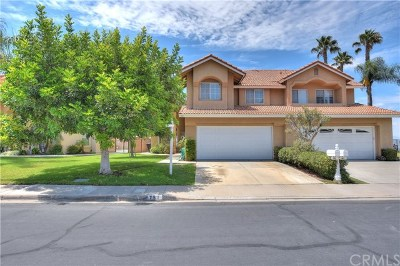 Anaheim Hills Single Family Home For Sale: 751 S Lone Star Lane