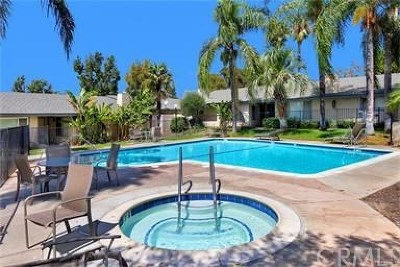 Riverside Rental For Rent: 2891 Canyon Crest Drive #40