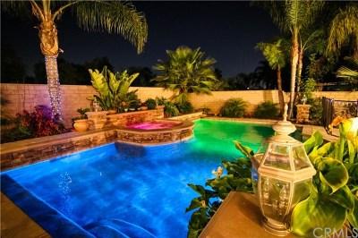 Corona Single Family Home For Sale: 2476 Mandarin Dr