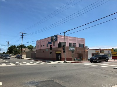 San Pedro CA Multi Family Home For Sale: $1,050,000