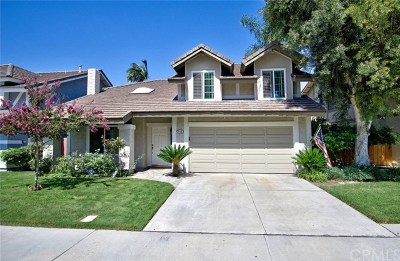 Placentia Single Family Home For Sale: 543 Lyons Way