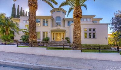 Orange Single Family Home For Sale: 2798 N Villa Real Drive