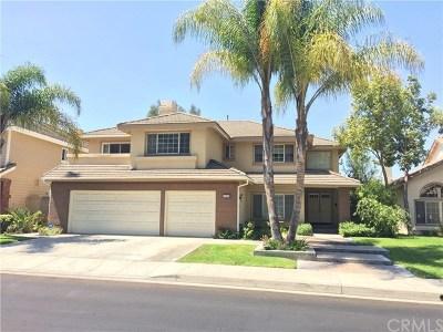 Orange County Rental For Rent: 2570 N Waterford Street