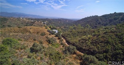 Trabuco Canyon Residential Lots & Land For Sale: 19242 Lambrose Canyon Road