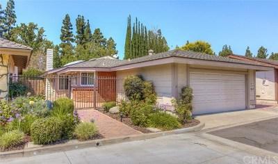 Santa Ana Single Family Home For Sale: 1263 Cabrillo Park Drive