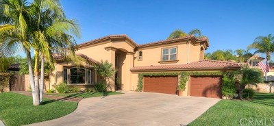 Anaheim Single Family Home For Sale: 111 S Mohler Drive