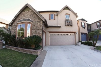 Tustin Single Family Home For Sale: 1456 Voyager Drive