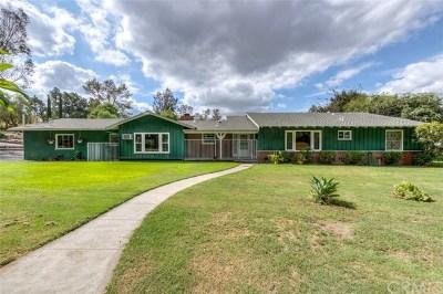 Yorba Linda Single Family Home For Sale: 5251 Highland Avenue