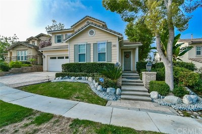 Fullerton Single Family Home For Sale: 2932 Hawks Pointe Drive
