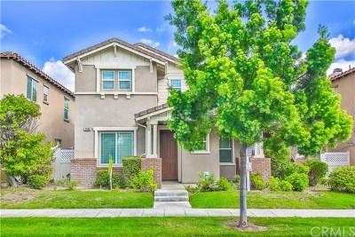 Fullerton Single Family Home For Sale: 1240 Goodwin Street
