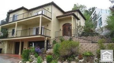 San Juan Capistrano Single Family Home For Sale: 31315 Don Juan Avenue
