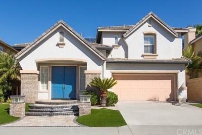 Placentia Single Family Home For Sale: 1013 Maertzweiler Drive