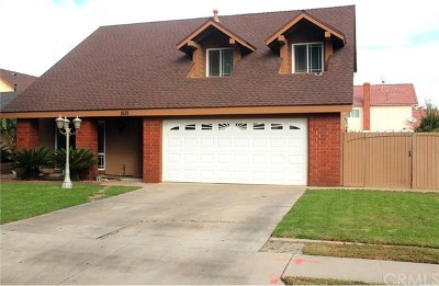 Anaheim Single Family Home For Sale: 1535 W Rene Drive