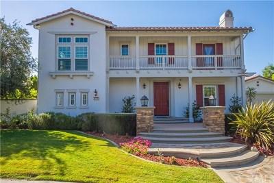 Yorba Linda Single Family Home For Sale: 4135 Dapple Gray Lane