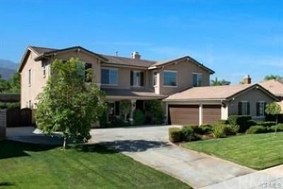 Corona Single Family Home For Sale: 1526 Sunshine Circle