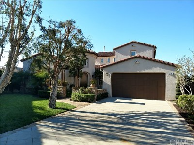 Ladera Ranch Single Family Home For Sale: 15 Christopher Street