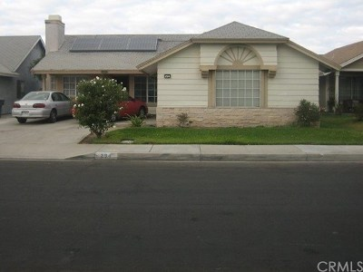 Perris Single Family Home For Sale: 294 Whirlaway Street