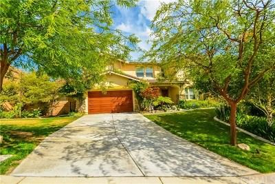 Riverside Single Family Home For Sale: 15835 Skyridge Drive