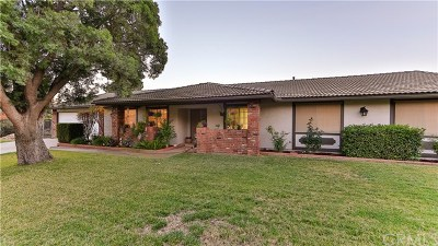 Perris Single Family Home For Sale: 18775 Ravenwood Drive
