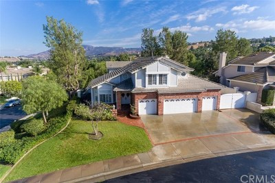 Anaheim Single Family Home For Sale: 704 S Hidden Creek Circle