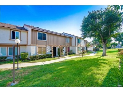 Santa Ana Condo/Townhouse For Sale: 460 Carriage Drive #393