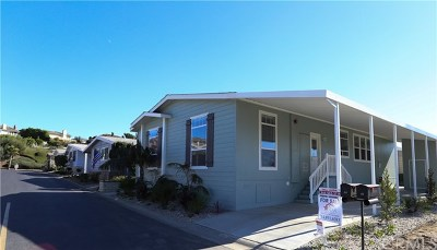 San Clemente CA Manufactured Home For Sale: $649,000