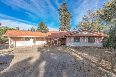 Orange County Single Family Home For Sale: 1192 Citrus Drive