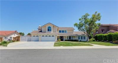 Single Family Home For Sale: 20765 Paseo De La Rambla