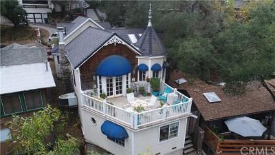 Modjeska Canyon, Silverado Canyon Single Family Home For Sale: 29213 Hazel Bell Drive