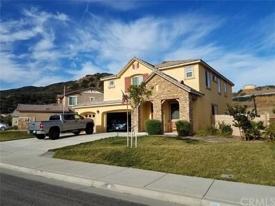Lake Elsinore Single Family Home For Sale: 29408 High Ridge Drive