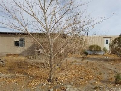 San Bernardino County Residential Lots & Land For Sale: 11888 Sheep Creek Road