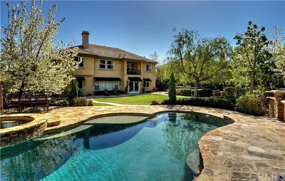 Yorba Linda Single Family Home For Sale: 3805 Welsh Pony Lane