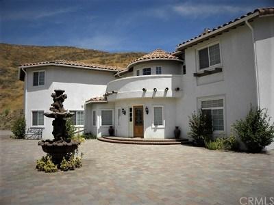 Corona Single Family Home For Sale: 11670 Dawson Canyon Road