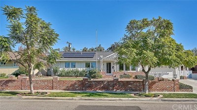 Fullerton Single Family Home For Sale: 2816 Woodbine Avenue