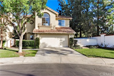 Tustin Single Family Home For Sale: 12160 Lamb Drive