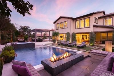 Aliso Viejo Single Family Home For Sale: 53 Anacapa Lane