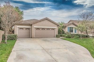 Corona Single Family Home For Sale: 651 Brianna Way