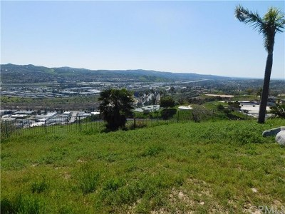 Yorba Linda Residential Lots & Land For Sale: 22590 Green Mount Place