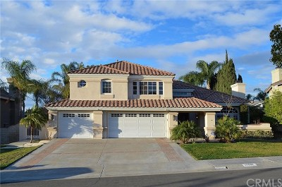 Yorba Linda Single Family Home For Sale: 17555 Orange Terrace Drive