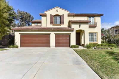 Corona Single Family Home For Sale: 1677 Camino Largo Street