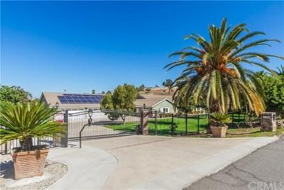 Corona Single Family Home For Sale: 7350 Poppy Street