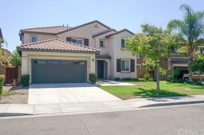 Lake Elsinore Single Family Home For Sale: 40939 Carnegie Circle