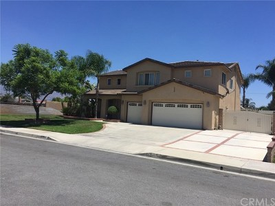 Rialto Single Family Home For Sale: 1745 N Joyce Avenue