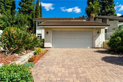 Placentia Single Family Home For Sale: 180 Horseshoe Drive
