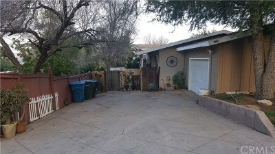Lake Elsinore Single Family Home For Sale: 33210 Zellar Street