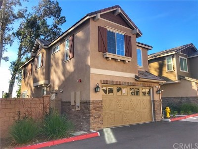 Rancho Cucamonga Single Family Home For Sale: 8621 Adega