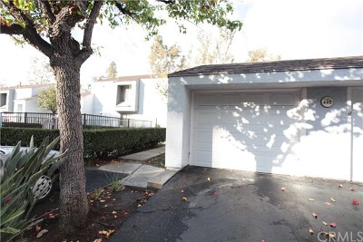 Anaheim Hills Multi Family Home For Sale: 445 S Ranch View Circle